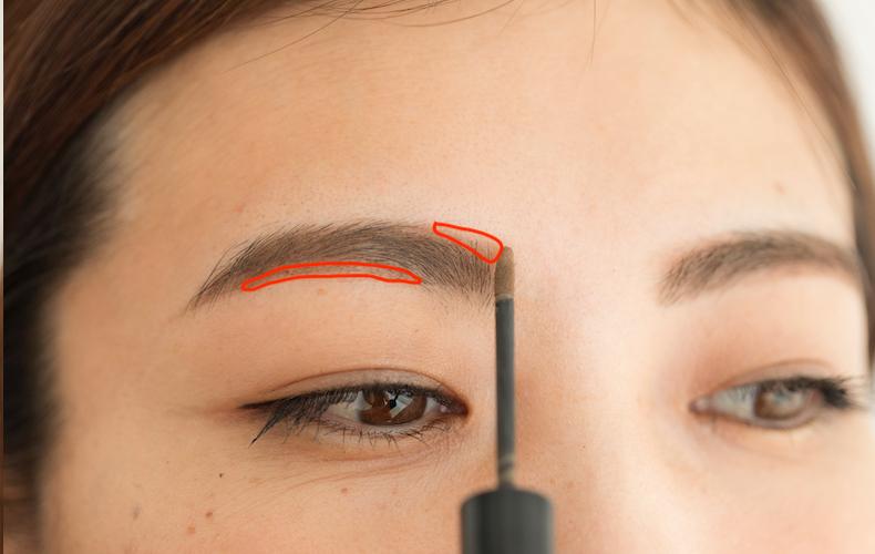 1.チップオンパウダーで毛がない部分に影をつける