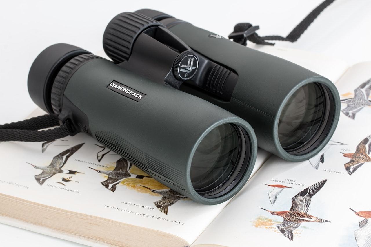 双眼鏡 おすすめ ライブ スポーツ 天体観測 選び方 ポイント 基礎知識