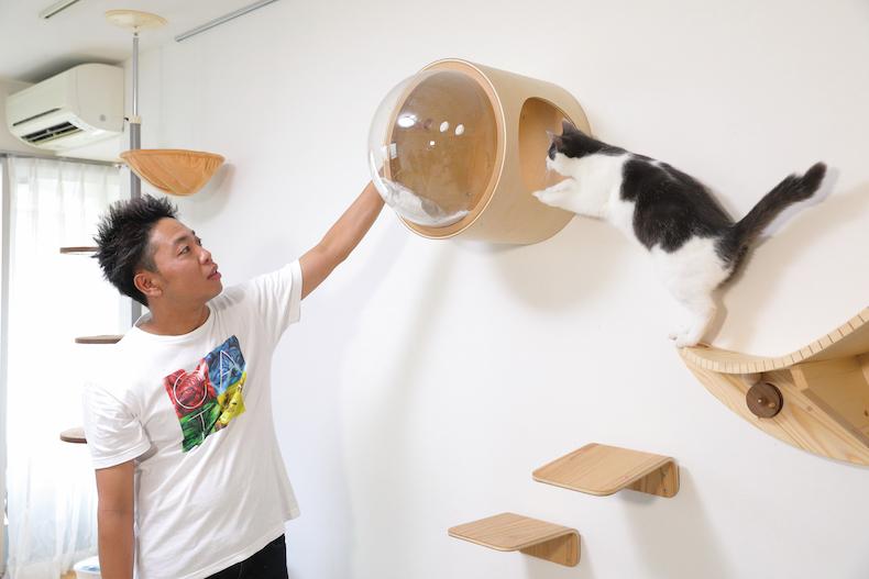 猫 サンシャイン 池崎 保護 サンシャイン池崎、猫を愛し猫に愛された男 保護猫活動、広がれ関心