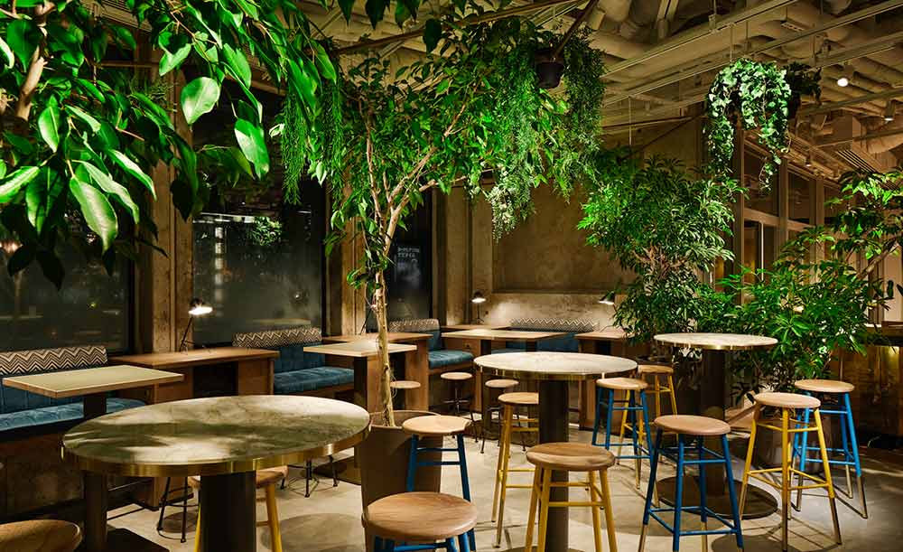 六本木 カフェ ランチ おすすめ おしゃれ 夜まで営業 電源 仕事 勉強 PARK6 powered by bondolfi boncaffe 店内 雰囲気