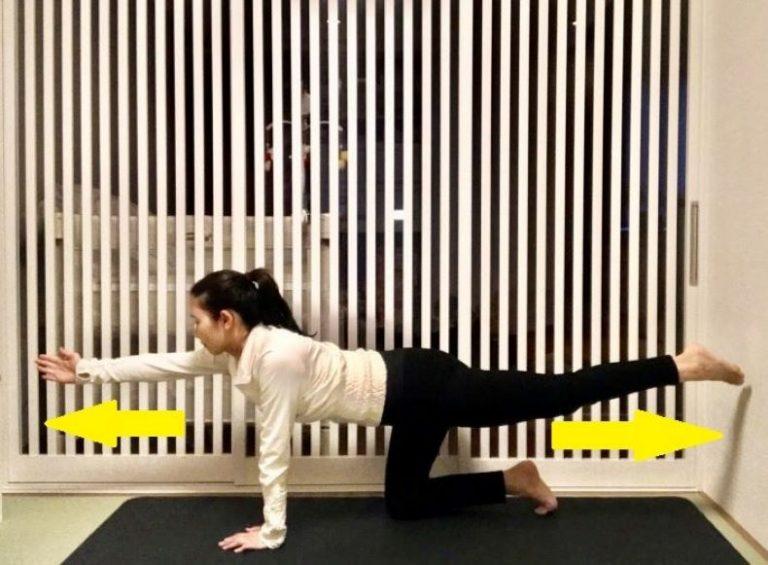 ■背筋を鍛えるトレーニング