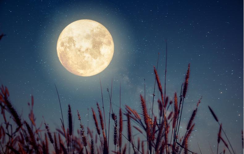 中秋の名月はいつ