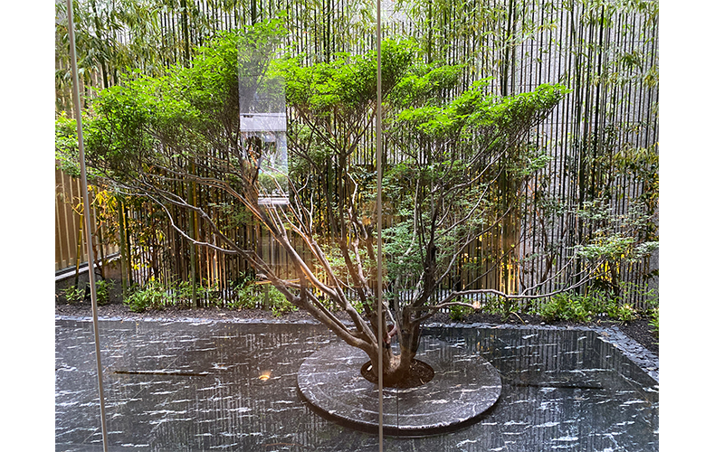 ザ・サウザンド京都
