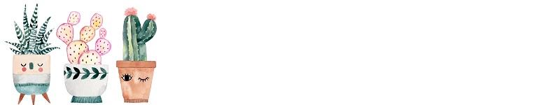Domaniドマーニ漢字クイズかんじクイズ「親子で学べる漢字クイズ」連載意外と書けない意外と知らない間違えがちさぼてんサボテン仙人掌覇王樹