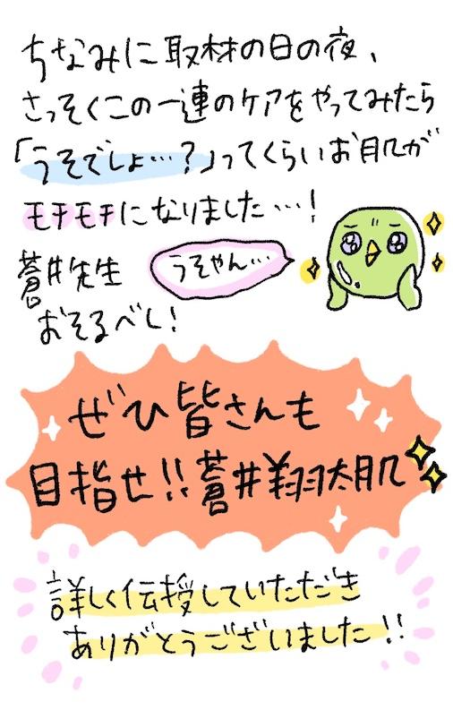 美少女戦士セーラームーンEternal,蒼井翔太