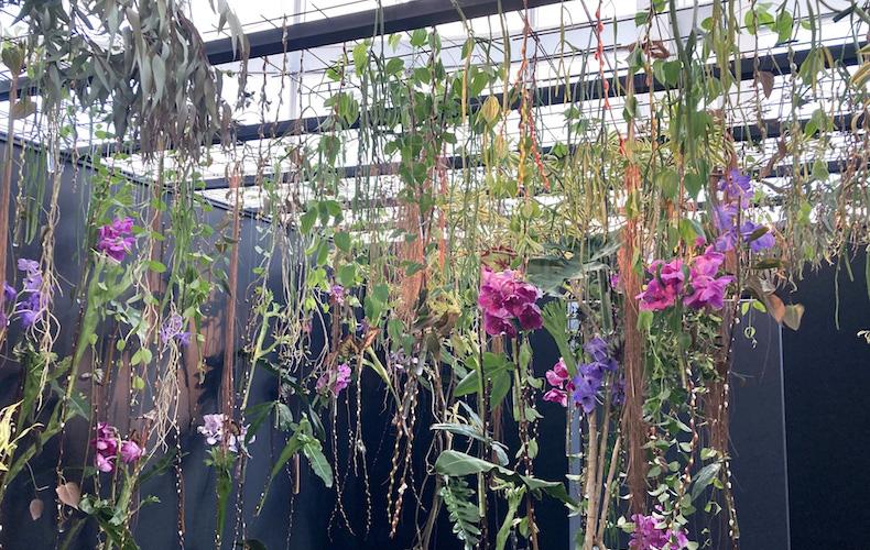 ニコライ・バーグマン,The Flower BOX Exhibition