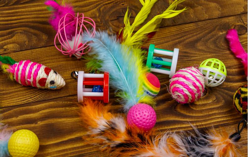 猫 おもちゃ 種類