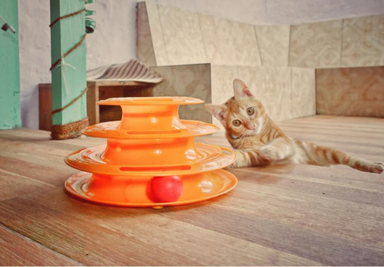 猫 おもちゃ インテリア おしゃれ