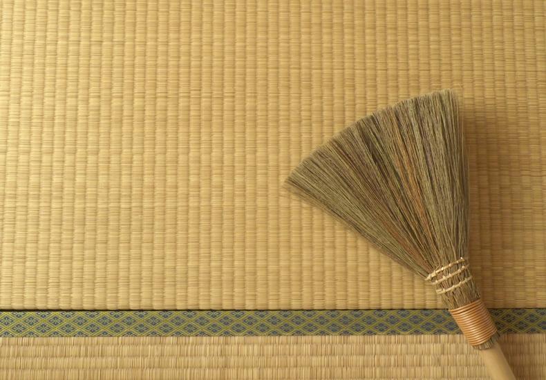 畳 カビ 対処法 掃除 防ぐ