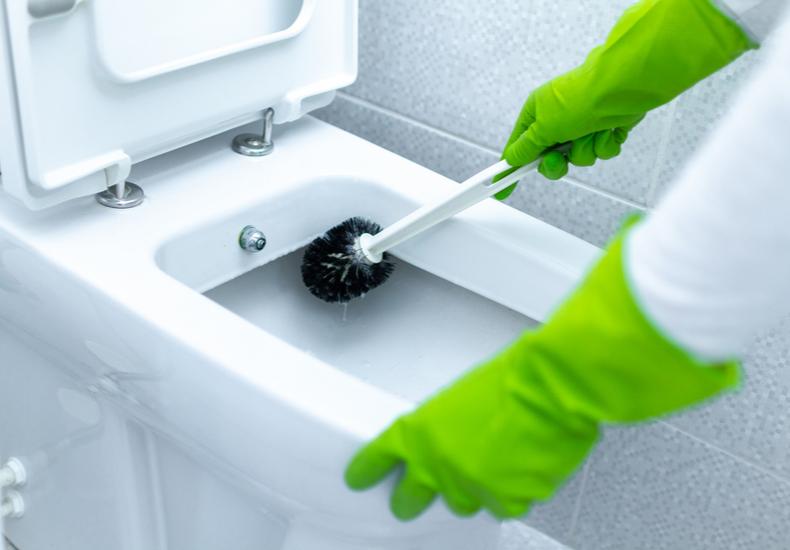 トイレ掃除 ブラシ おすすめ ブラシタイプ