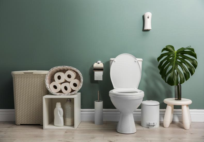 トイレ 観葉植物 おすすめ おしゃれ 飾り方 インテリア 置き方