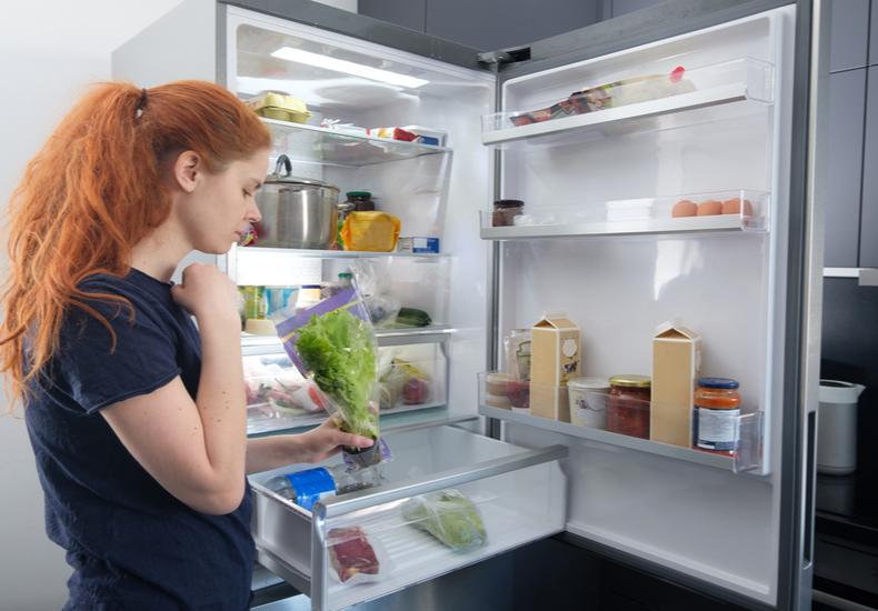 冷蔵庫 買い替え タイミング おすすめ 時期 セール
