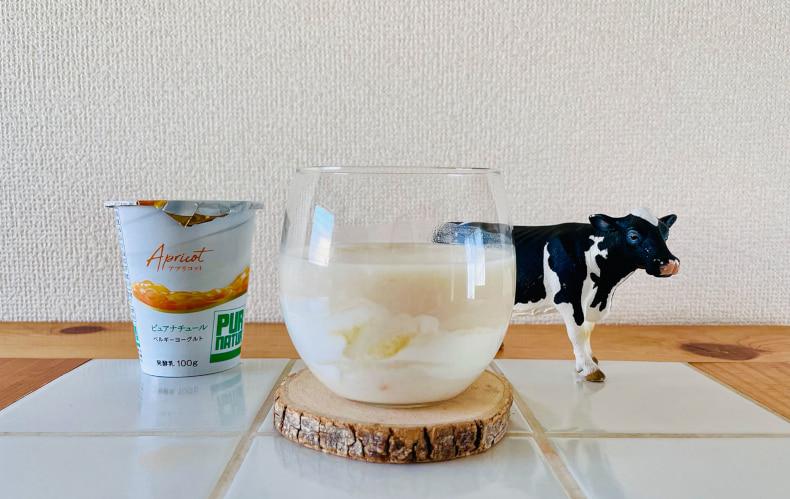 夏の甘酒 甘酒アレンジ ひんやりスイーツ ヨーグルトレシピ ヨーグルトアレンジ 簡単スイーツレシピ